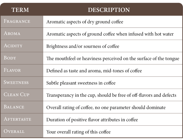 coffee cupping common terms