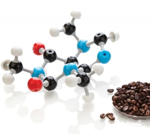 The Chemistry of Organic Acids in Coffee: Part 3