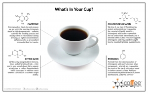 What's in Your Cup - 2013 Edition