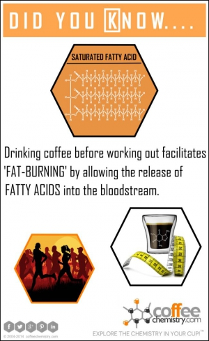 Coffee and Fat-Burning